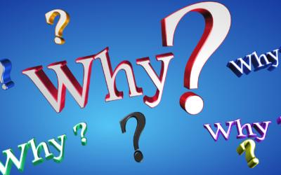 Die große Frage nach dem Warum
