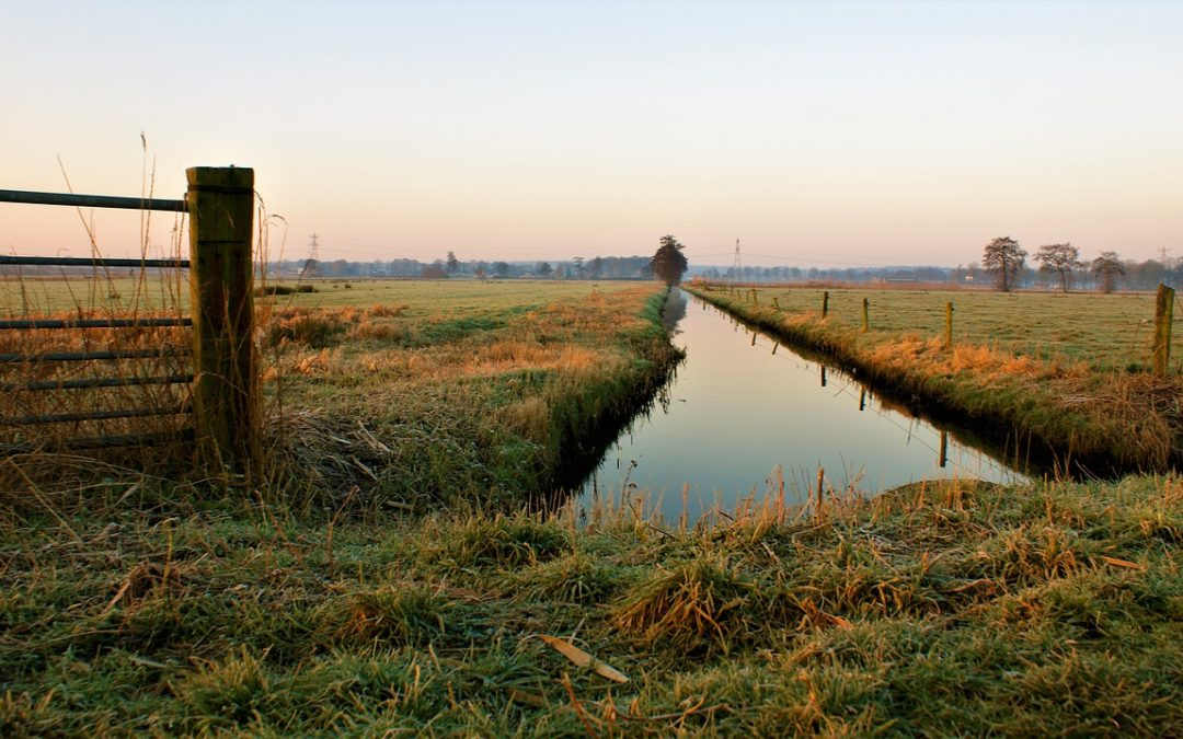 Niederlande: Polder als Lebensprinzip